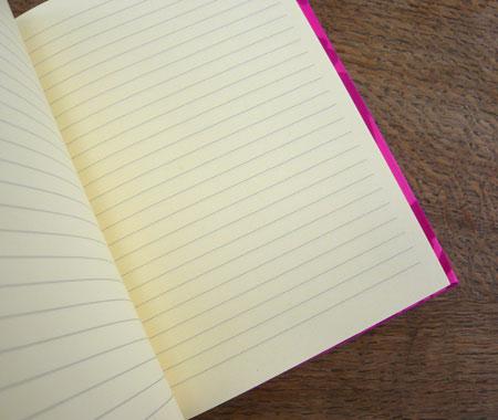 pinkbrocade-open.jpg